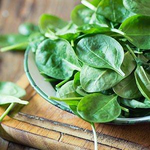 9 alimentos ricos em ferro para incluir na dieta
