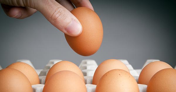 O ovo é bom. E o colesterol também.
